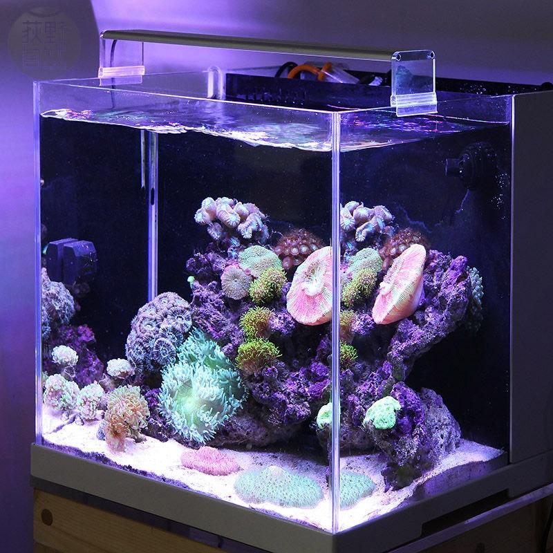 Chihiros marino luz LED coral SPS LPS acuario mar arrecife tanque blanco azul Chihiros