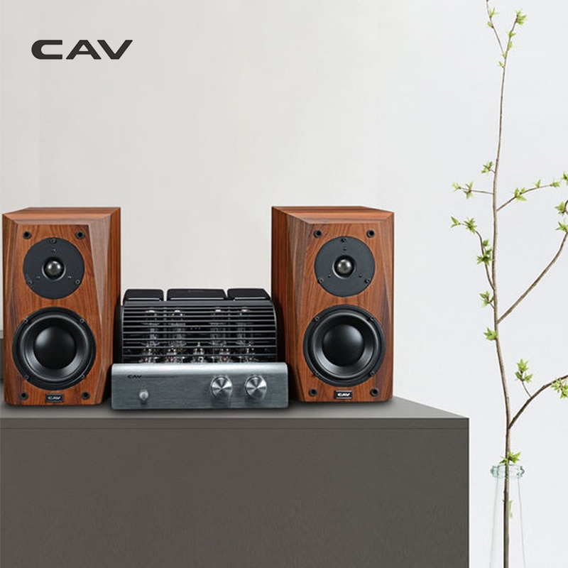 CAV FL-25 Speakers High End Bookshelf Speaker Wood Speaker Veneer Finished Aux Loud Hi-End s For Computer Hifi Boxes