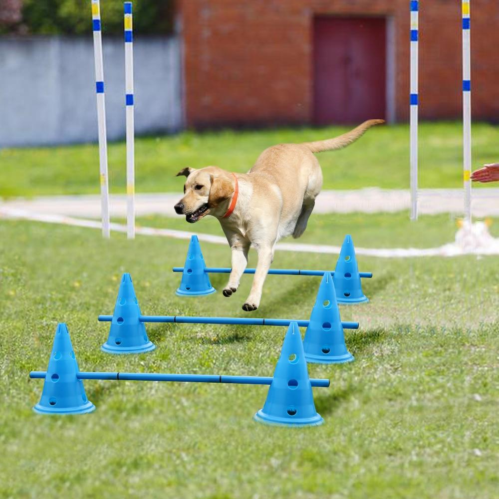مجموعة من 3 وحدات تدريب للكلاب ، معدات خارجية لمرونة الرشاقة ، تدريب الكلاب ، القفز ، مستلزمات الحيوانات الأليفة