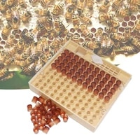beekeeping tool set queen bee cultivation system incubator box 110 production cells wangtai beekeeping equipment set 30p