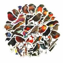 40 Stks/doos Robins Vogels Decoratieve Stickers Stickers Diy Decoratie Dagboek Briefpapier Stickers Prachtige Gift