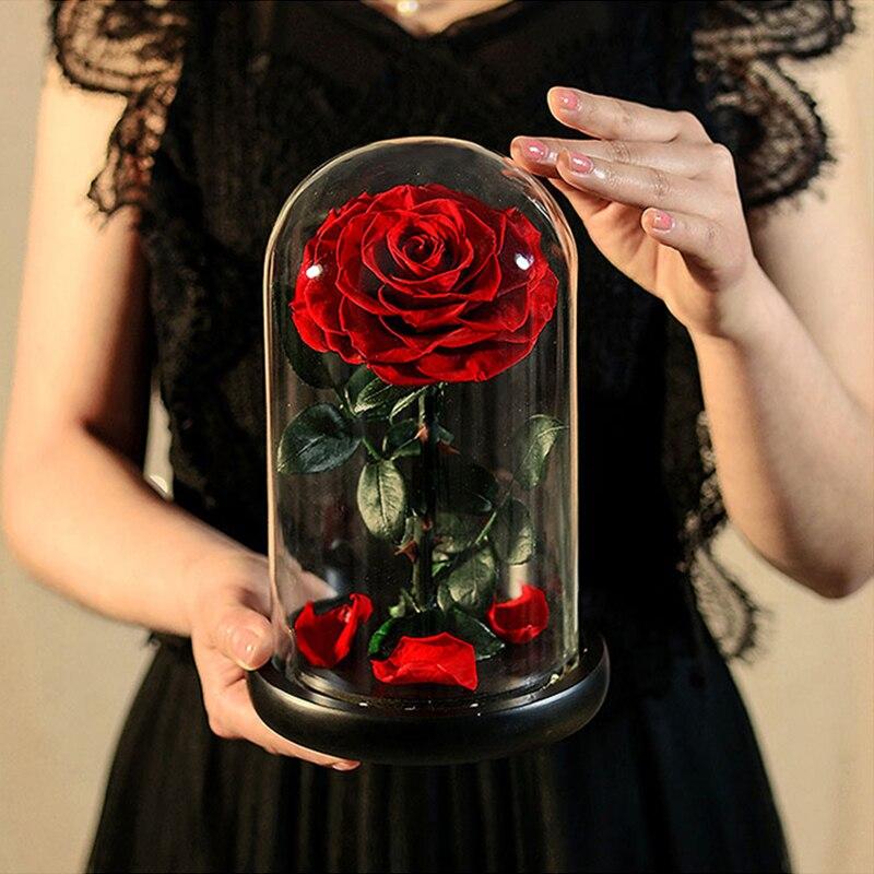 AINYROSE-وردة أبدية تحت قبة زجاجية ، زهرة محفوظة ، Beauty and The Beast ، لعيد الحب ، لصديقته