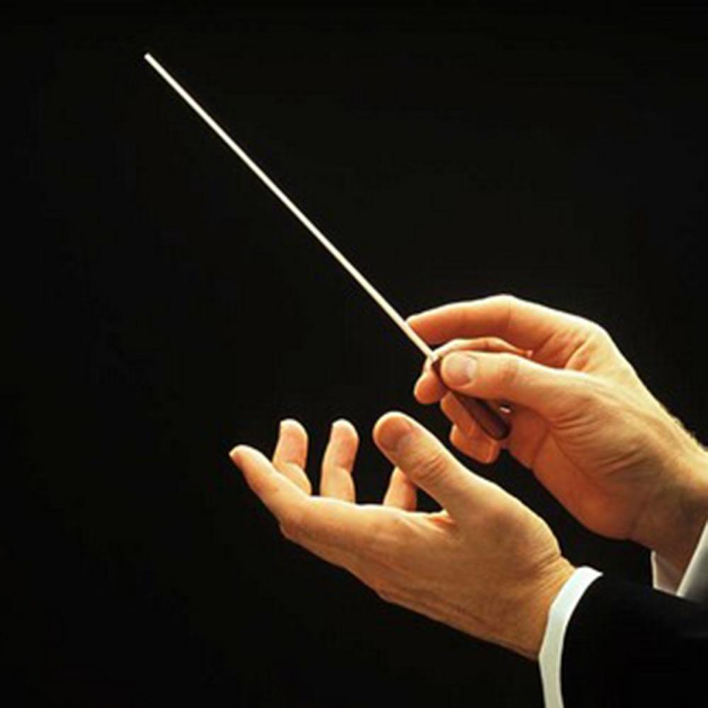 Music Concert Rhythm Band Director Conductor Baton 38.5cm Musical Instrument wholesale
