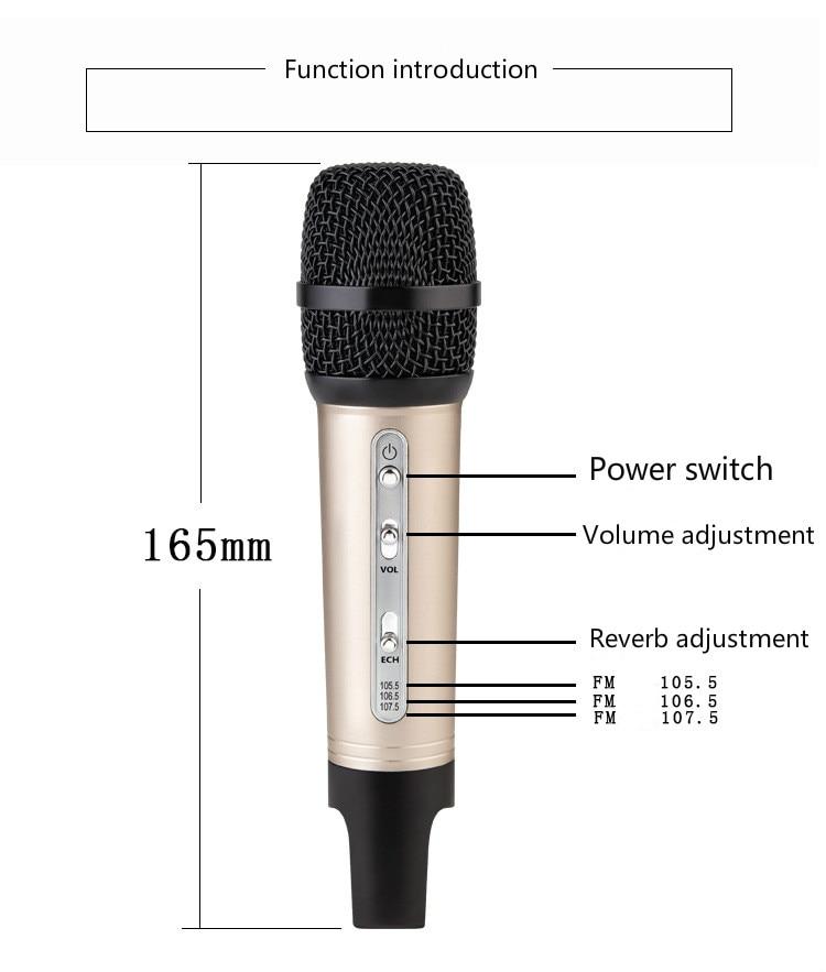Mini Car Microphone FM Wireless Bluetooth Mobile Phone National K Song Microphone Car God Mai Karaoke enlarge