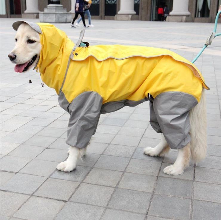 Impermeable grande para perros, ropa impermeable, Mono para lluvia resistente al agua para perros medianos pequeños, Golden Retriever, ropa para exteriores, ropa para perros, abrigo, blanco