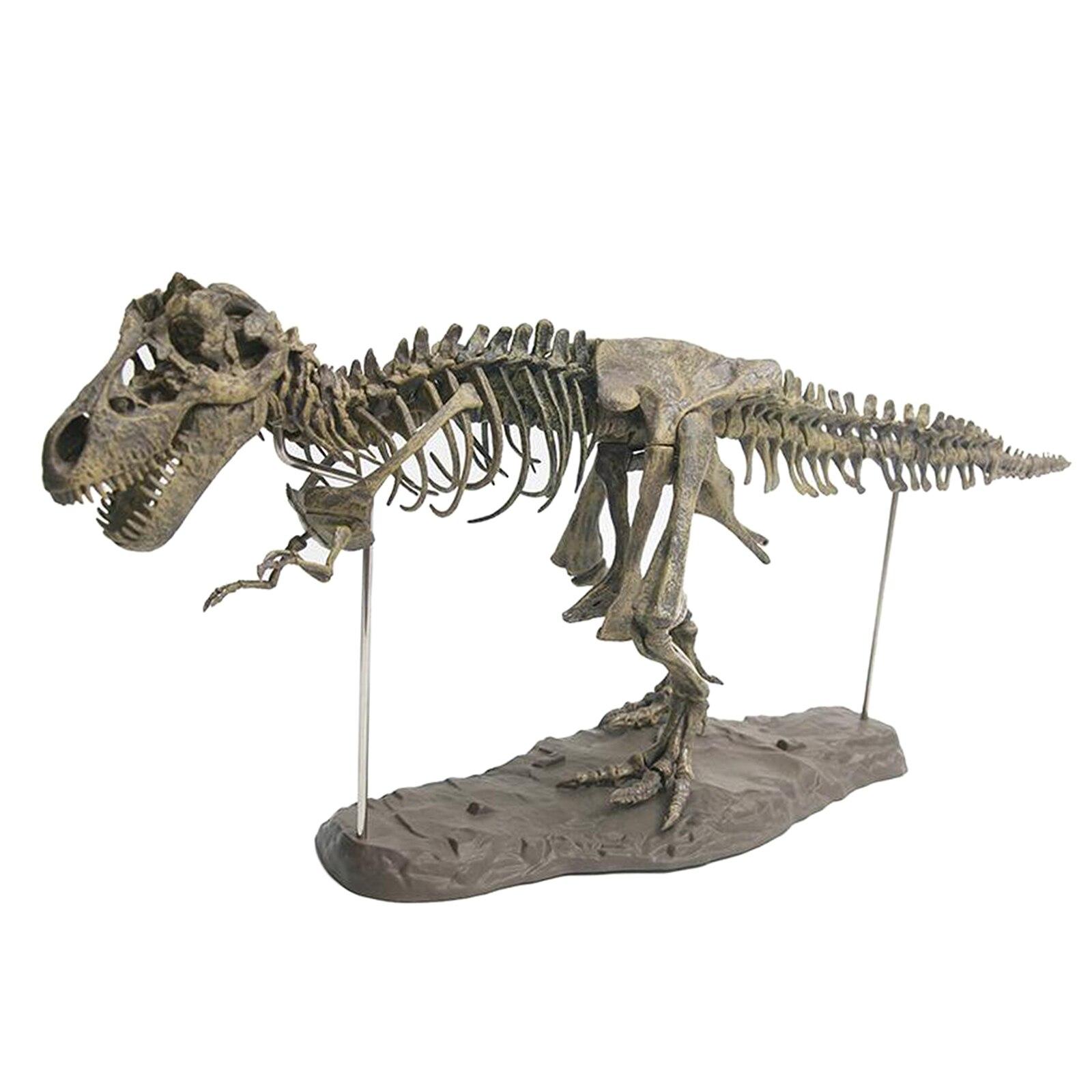 4d dinossauro modelo de montagem brinquedo brinquedos educativos desenvolver criancas