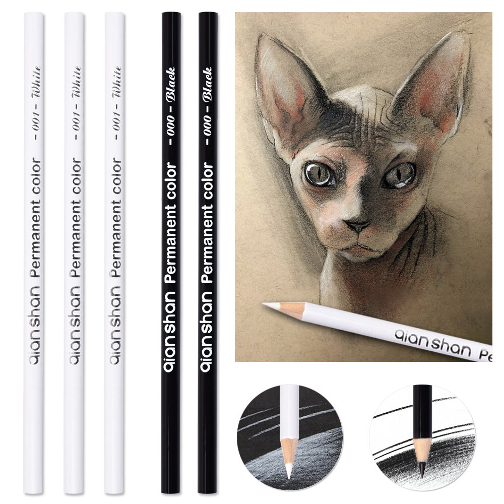Conjunto de arte de lápiz de acuarela de boceto negro blanco, acuarela, dibujo, pincel pintado a mano estudiante profesional de alta Luz
