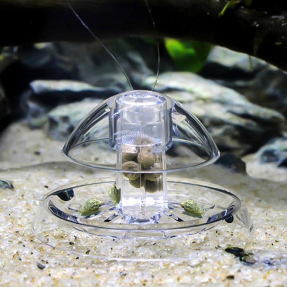 Plantas caracol armadilha apanhador no aquário tanque de peixes planta claro planariano pragas captura caixa sanguessuga parasitas worms ambiente limpo