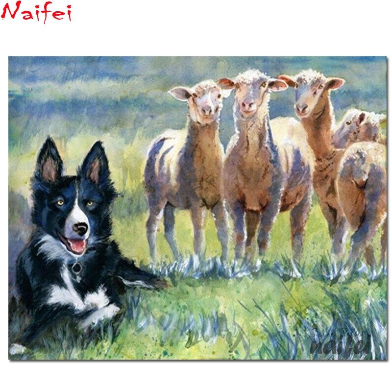 Cuadrado completo/redondo diamante pintura borde Collie Sheepdog pintura de ovejas arte perro bordado en diamantes DIY mosaico de diamantes artesanías