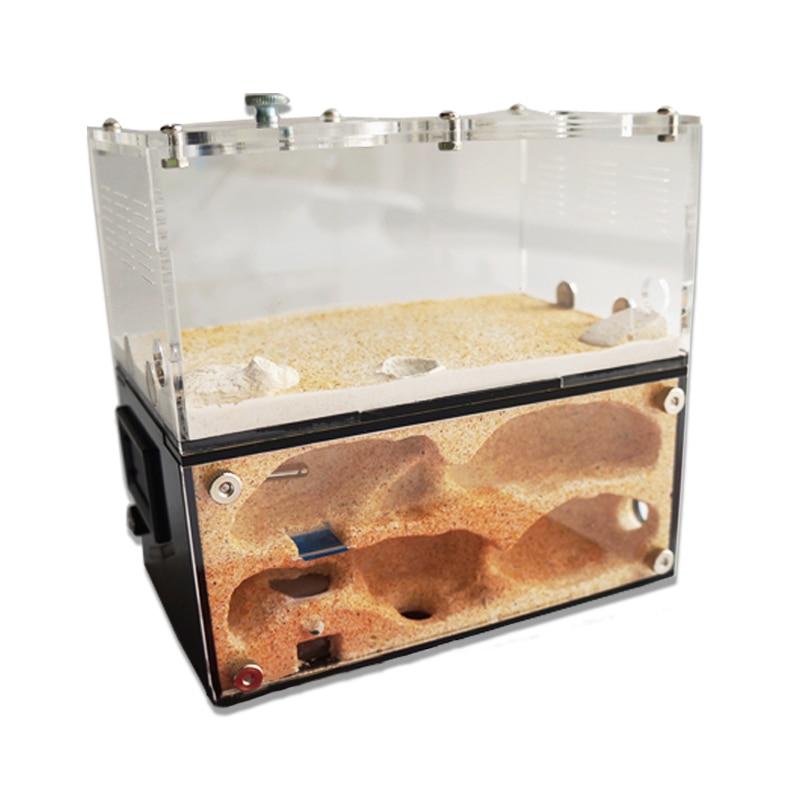 AliExpress - Acrylic Ant Farm Spliceable Ant Nest with Intelligent Temperature Control Concrete Ant House Anthill Pet Workshop 15*10*13.5cm
