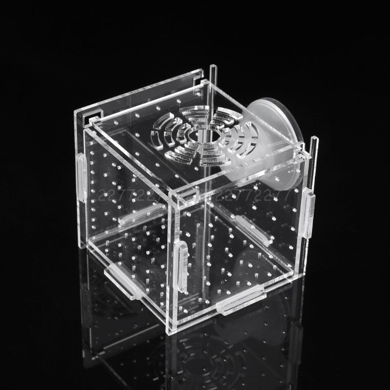 Caja de aislamiento para la cría de peces de acuario incubadora de peces para bebés pecera criadora N21 19 Dropship