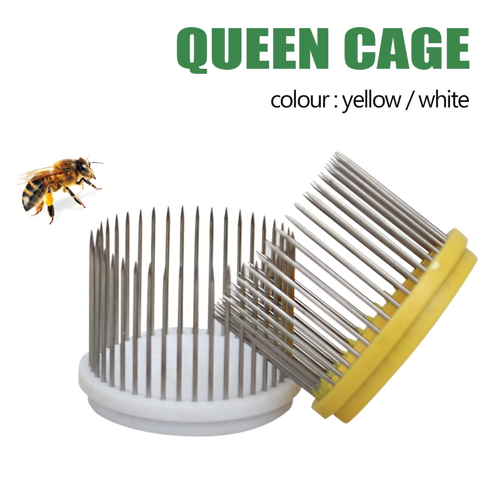 beekeeping tools protective cover base bee queen king cage accessories fertility king pedestal guard cage cover bee equipment 10 New Queen Bee Cage Stainless Steel Needle Type Catcher Rearing Cover Catcher Beekeeper Beekeeping Tools Controlling Devices