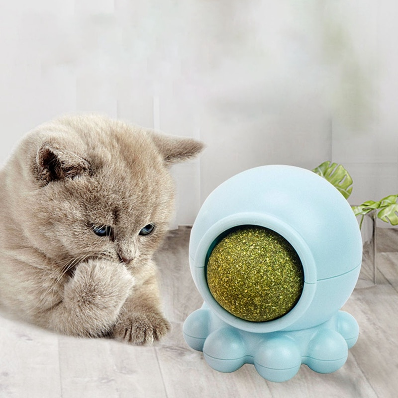 1PC Pet Catnip Toy Edible Nature Catnip Ball Safety Healthy Cat Mint Cats Home Chasing Game Toy Clean Teeth Protect The Stomach