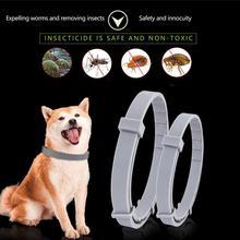Retirer puces et colliers tiques pour chats   Collier anti-moustiques et insectes 38cm 62cm pour chiens jusquà 8 mois