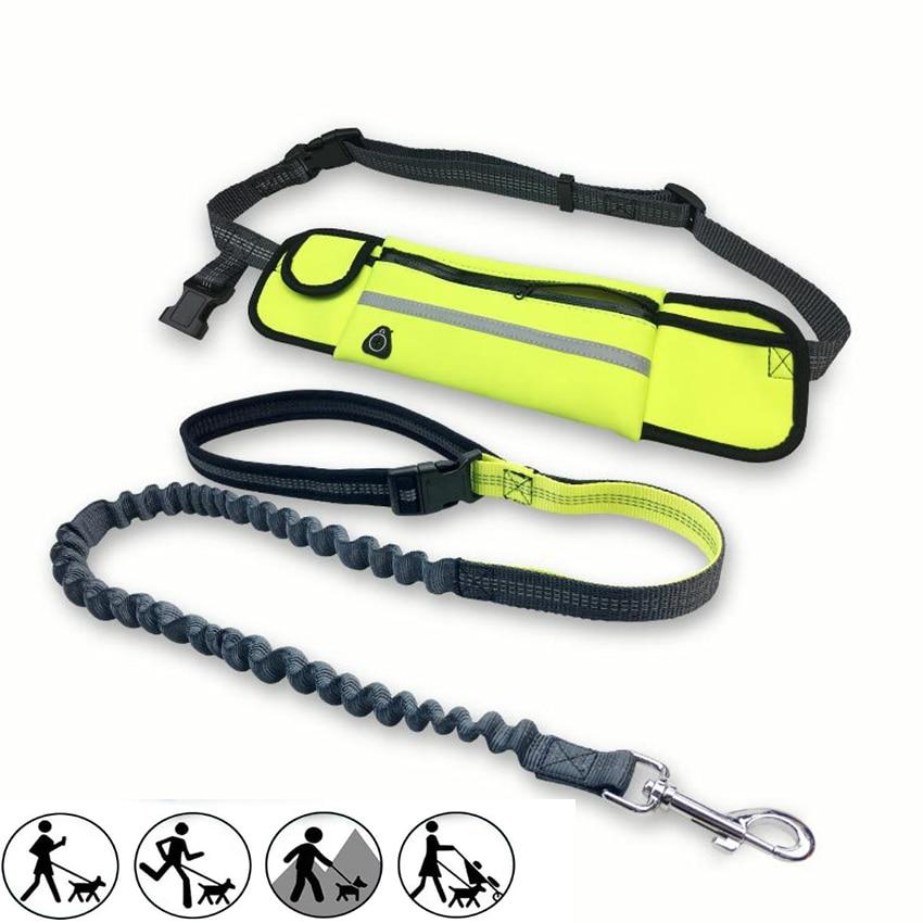 Jogging Lead Waterproof Running Belt Dog Collar Leash Retractable Hands Free Dog Leash Professional Pet Training Dog Leash Set