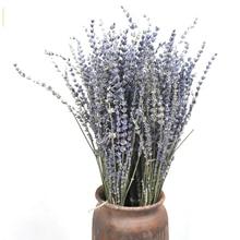 80Pcs Lavender Natural Dried Flower  Bouquet for Wedding Party Decoration DIY Craft Home Decor Scrapbook Lavender Branch Props