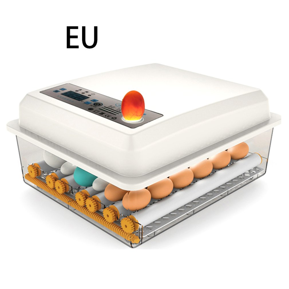 Incubadora de Ovos Ferramenta de Incubação Totalmente Automático Ovos 7 Digital Mini Chocadeira Pequena Galinha Pássaro Ovo Incubadora Automática Agrícola 16 –