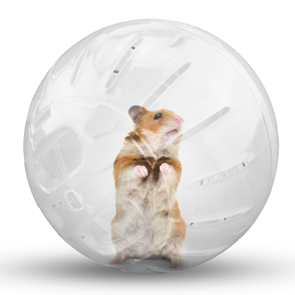 1pc 12/10cm hamster ball mouse toy pet chinchilla ball hamster gerbil rat jogging fitness ball cage