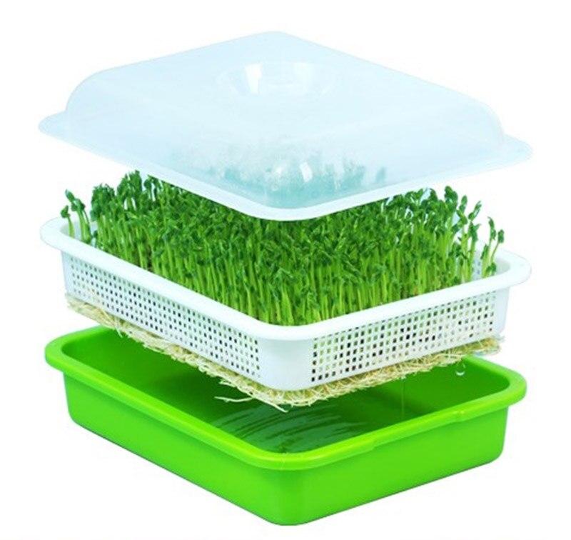 Sprouter semente Bandeja Bpa PP Livre-Grande Capacidade Produtor Wheatgrass Saudável Do Solo com a Tampa Da Bandeja De Mudas Placa Broto hidropônico