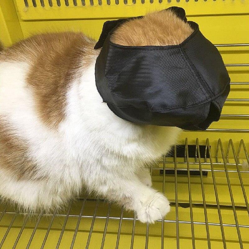 Máscaras de olho de gato à prova de mordida capa protetora focinho venda remendo beleza grooming ferramentas gato banho organizador acessórios fornecedores