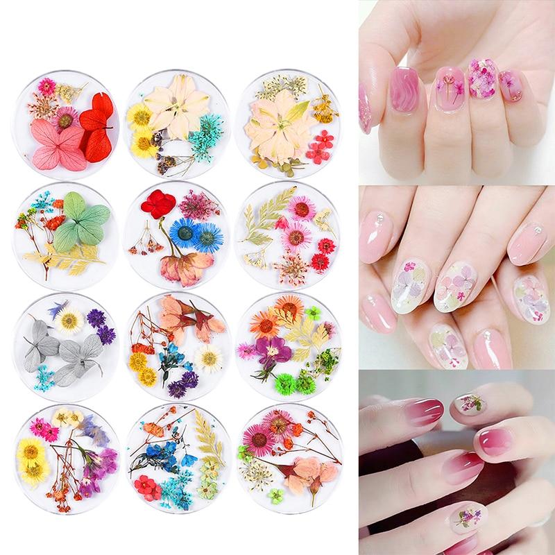 Mtssii flores secas decoración de uñas pegatina Floral Natural 3D belleza seca uñas arte calcomanías Hortensia pequeñas flores para manicura