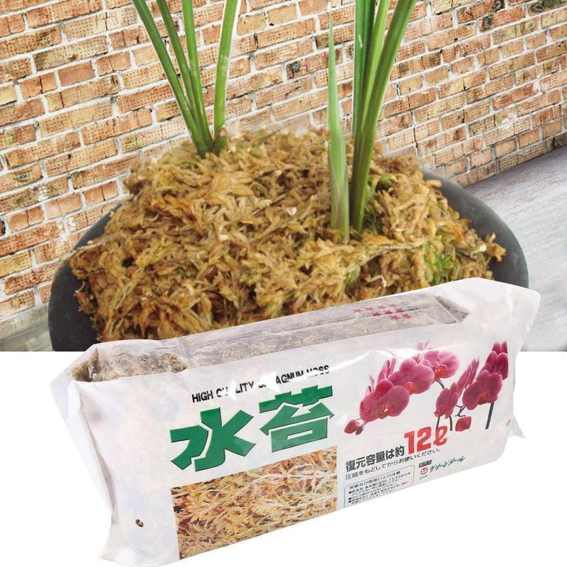 6/12L Sphagnum Moss Garden Supplies Moisturizing Nutrition Organic Fertilizer For Phalaenopsis Orchid