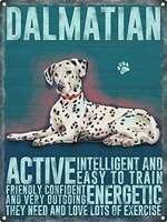 retro tin sign dalmation metal wall plaque outdoor indoor wall panel retro vintage mural size 20x30 cm poster