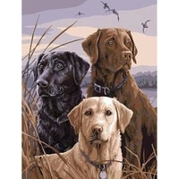 dog acrylic painting by numbers 50x65 canvas with frame coloring drawing oil picture diy kits for adults paint by numbers decor