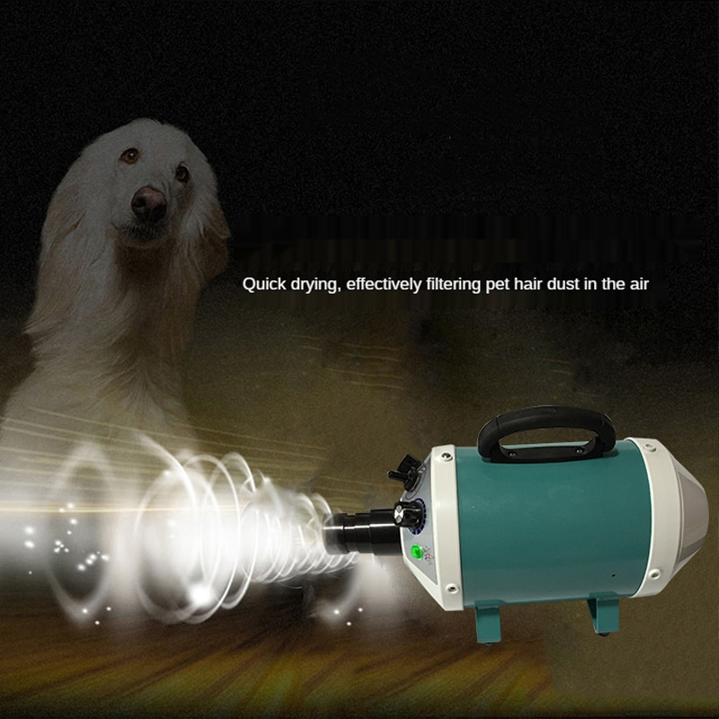 2800W Power Hair Dryer For Dogs Pet Cat Grooming Blower Warm Wind Secador Fast Blow Small Medium enlarge