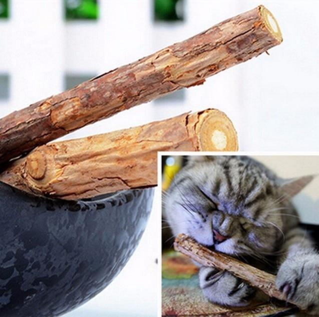 5 pçs gato limpeza dentes puro natural catnip vara pet gato molar creme dental silvervine actinidia frutas matatabi gato lanches pet su