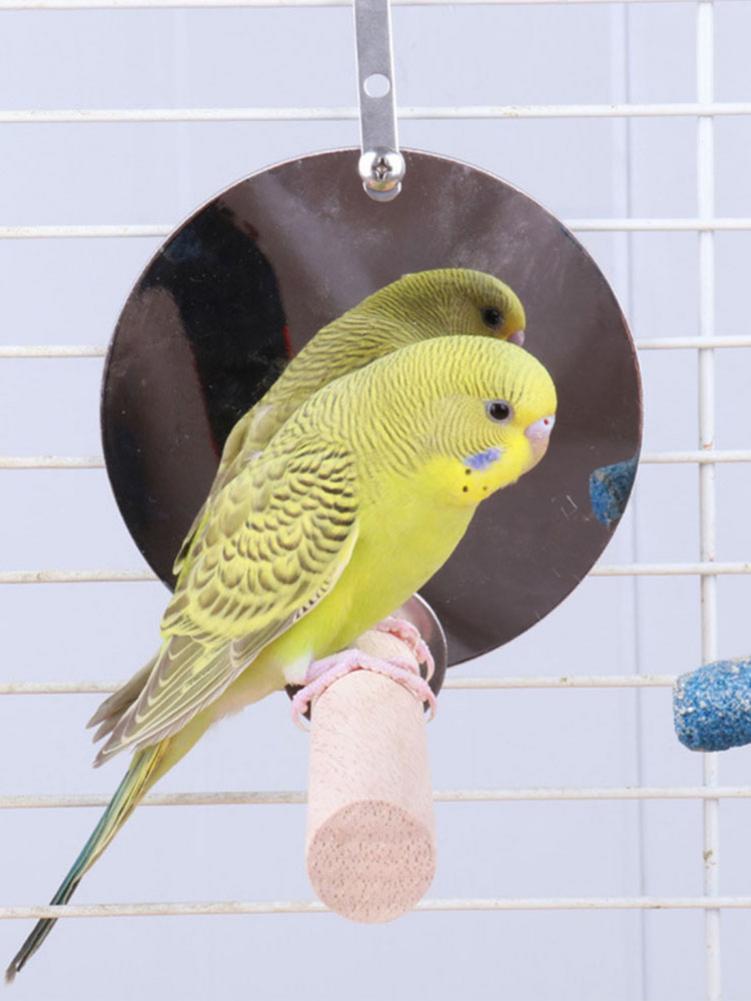 Innovador ave de juguete loro pájaro soporte de oscilación con espejo mascota juguete jaula accesorios mascota percha para pájaros nido jaula Envío Directo