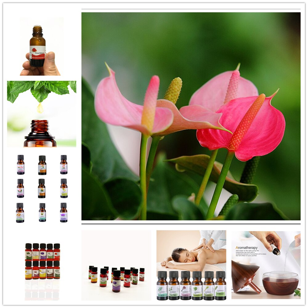 Breast Enlargement Essential Oils Full Elasticity Chest Care Firming Lifting Fast Growth Big Bust In