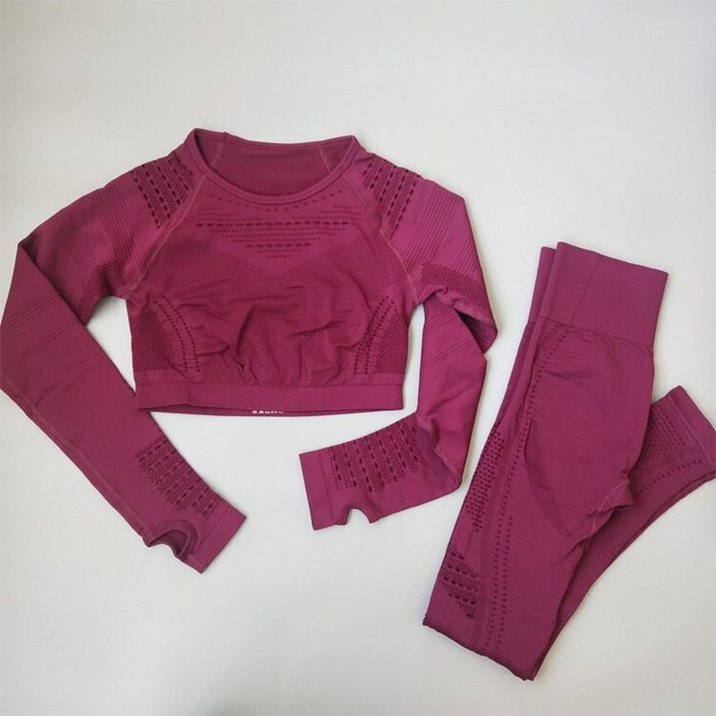 Women Seamless Yoga Sets High Waist Gym Mesh Leggings Shirts Suit Long Sleeve Fitness Workout Sports Running Thin Yoga Sets