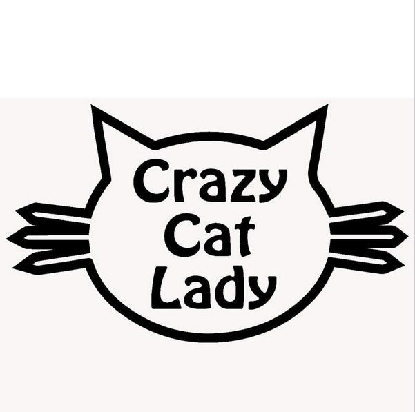Señora loca del gato lindo traviesa mascota divertido ordenador pegatina para ventana parachoques para computador portátil, Kayak de etiqueta de vinilo de ()