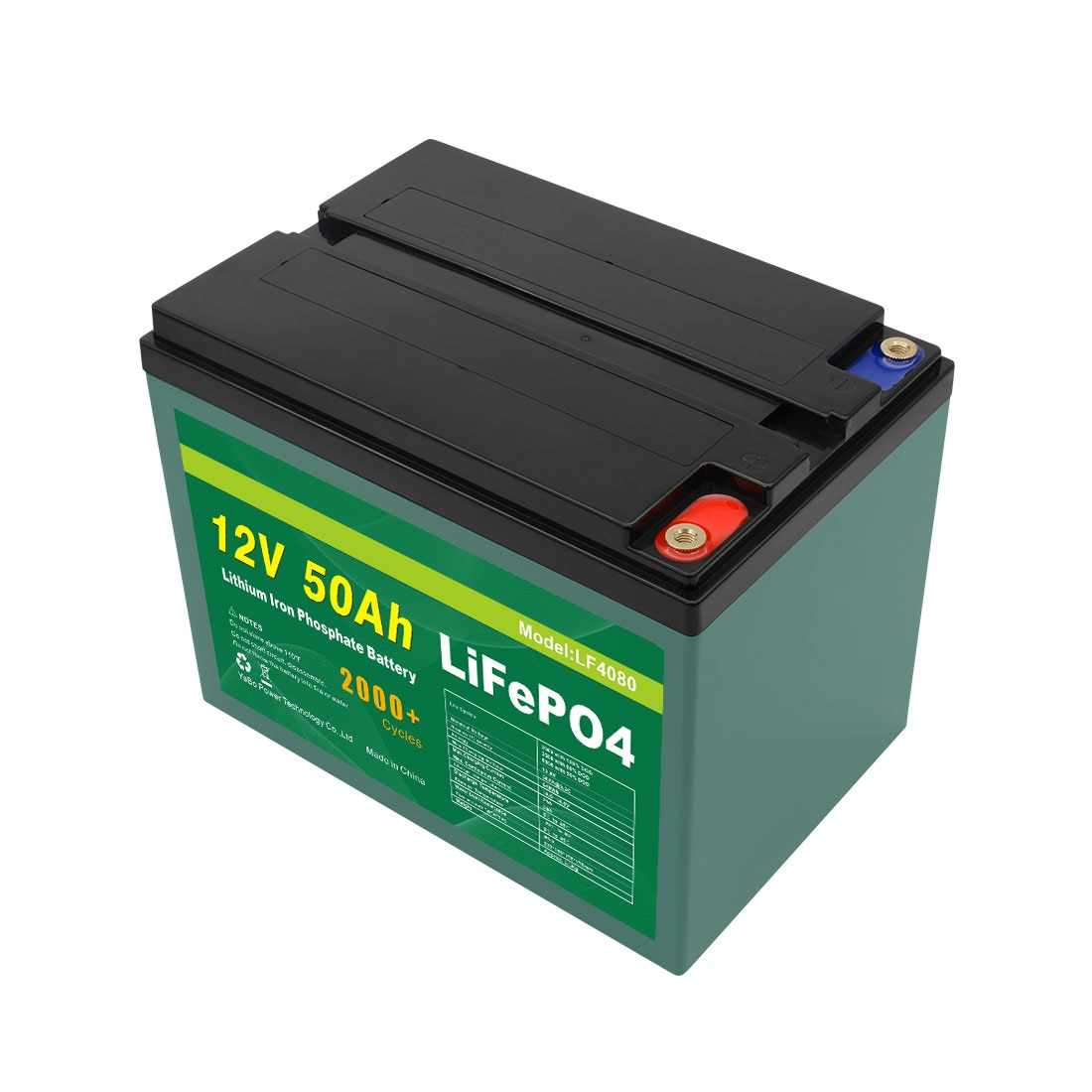 Customized Standard Terminal M6 Deep Cycle Lithium Ion Battery Pack Lifepo4 50Ah 18650 Lithium Battery enlarge
