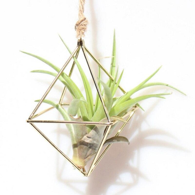 Colgador de Tillandsia Exhibidor de plantas en el aire Metal geométrico arte del hierro flor rústica maceta colgante plantas estante para el jardín del hogar 1