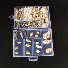 Aproximadamente 200 unids/caja artesanías con conchas marinas conchas naturales de fiesta Mini conchas de maíz tornillo de maíz decoración de pared DIY paisaje de acuario