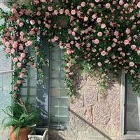 Pivoine artificielle en rotin  the  Rose  fausse fleur  decoration de mariage  pour la maison