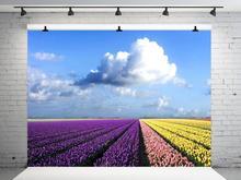 10X10FT VinylBDS mariage arrière-plan PhotographyBlue ciel blanc nuages Photo Shoot arrière-plan lavande océan Photo arrière-plan