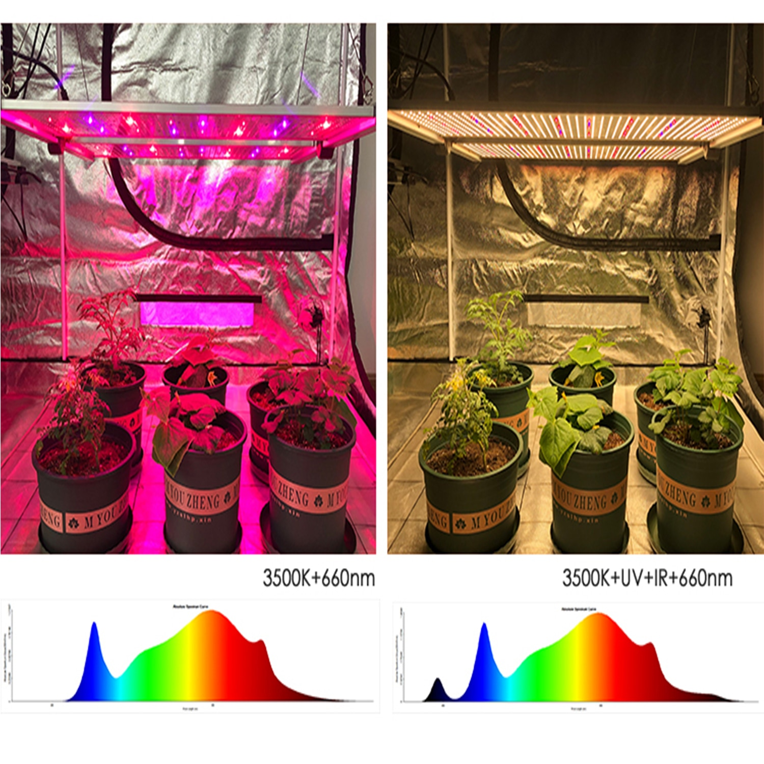 KEBOSHA G1  LED Grow Lights with Full Spectrum Samsung LM301H Osram LG Chips Dimmable Plant Growing Lamp For Indoor Garden Grow enlarge