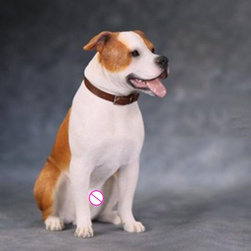 Escala 1/6 simulado modelo Animal American Staffordshire Terrier 12 cuerpo de figura de acción escena accesorios modelo de traje de