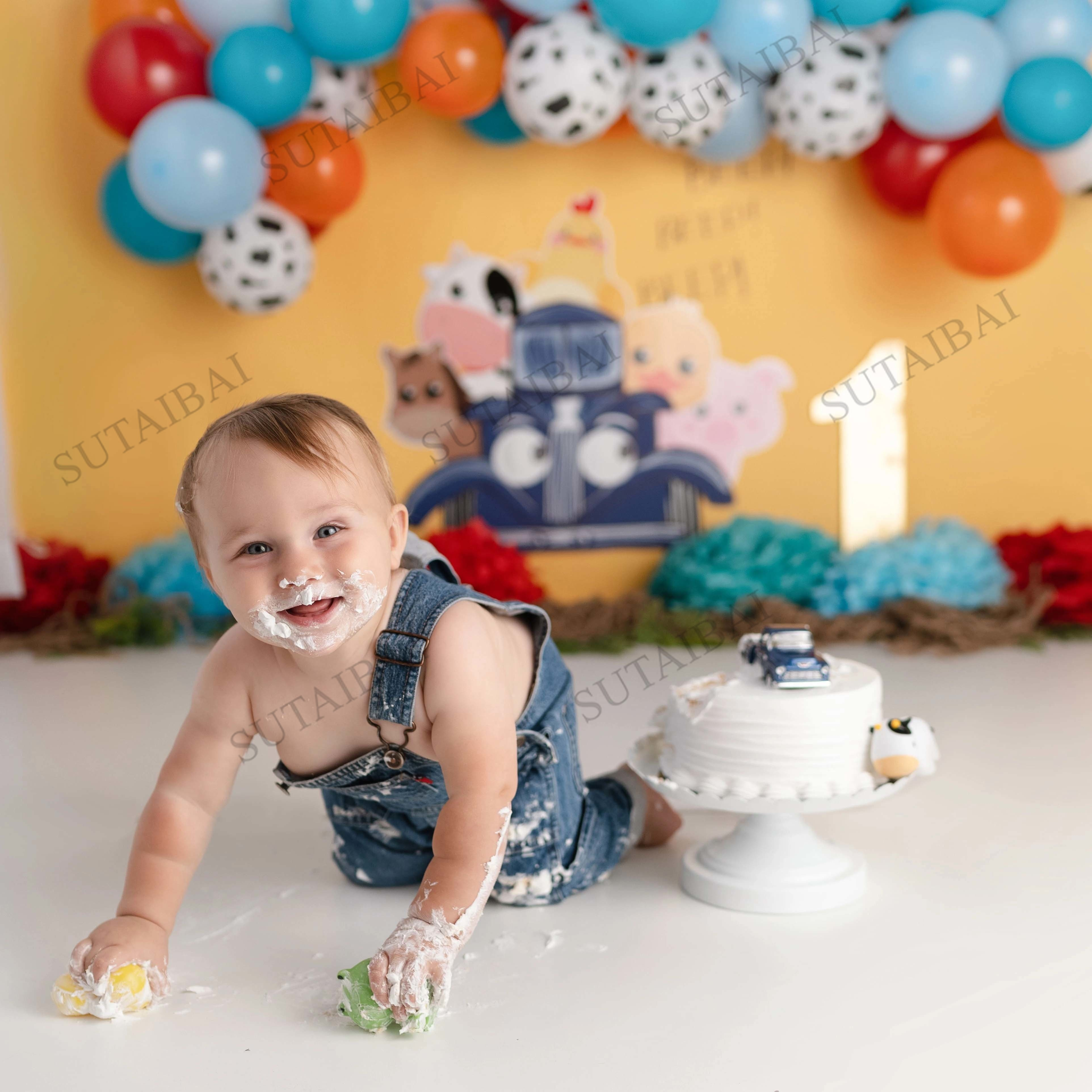 Animal Farm Cake Smash Photography Backdrops Kids 1st Birthday Photographic Studio Photo Backgrounds Colorful Balloon Decor enlarge