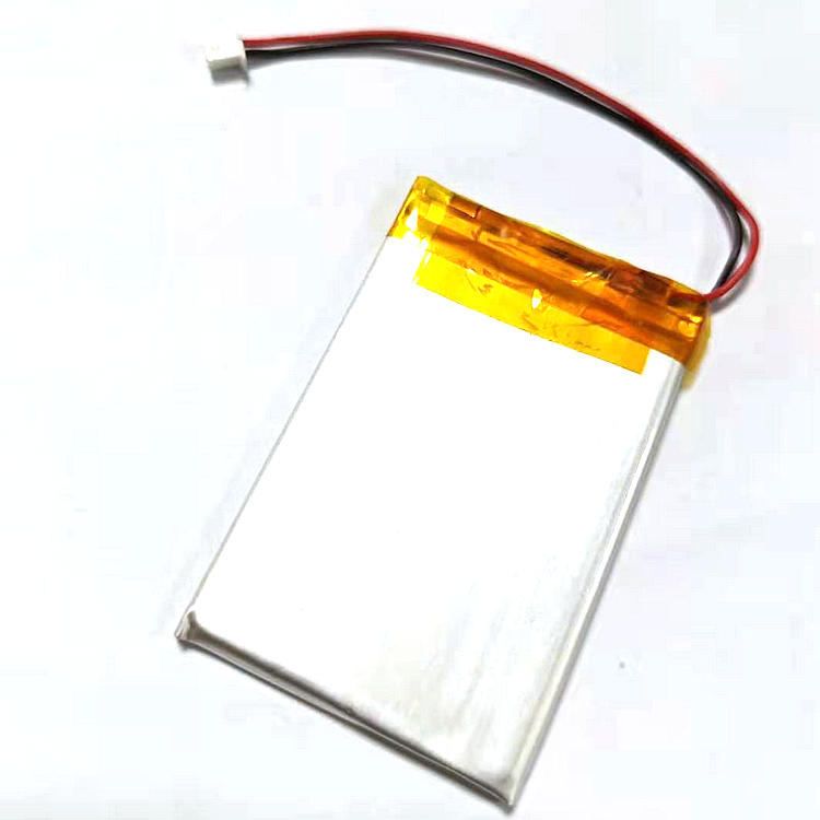 Replacement  Rechargeable 800MAH Battery for Sony NWZ-A826 A827 A828 A829 A820 A726 A720 S738 Player