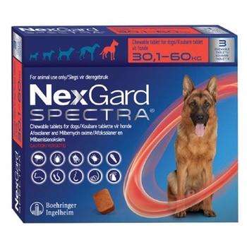 Spe-Ctra For 30-60kg Pet For Dog