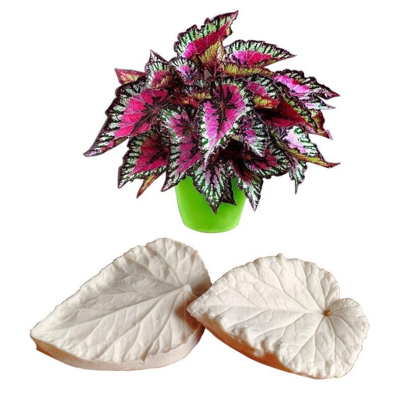 Begonia hoja Veiner molde de tarta de silicona Chocolate Fondant gumpasta azúcar arcilla flor moldes decorativos para tartas DIY M2111