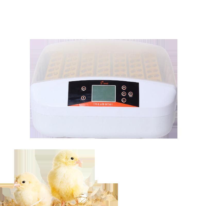 Incubadora com Controle de Temperatura Máquina para Chocadeira Incubadora Automática Frete Grátis Turner Codornas Hhd 56 Ovo