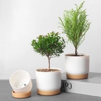 nordic simple succulent flower pot home garden decor plastic double layer automatic water absorbing green dill indoor plant pots