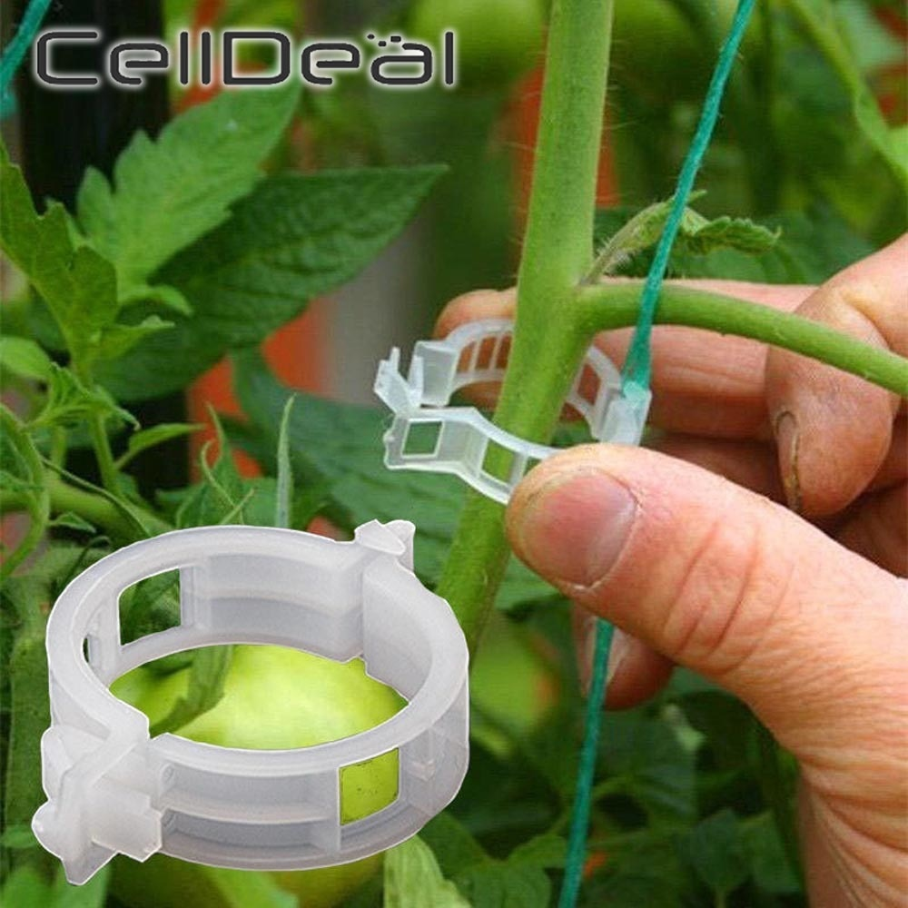 50/100pcs Plastic Plant Clips Supports Connects Reusable Protection Grafting Fixing Tool Gardening Supplies for Vegetable Tomato