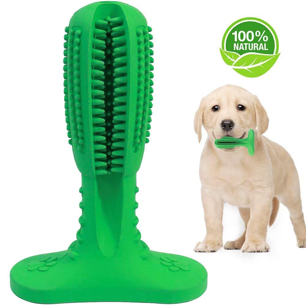 Cepillo de dientes para perro, perro, menta, juguetes para masticar, mascotas, cuidado bucal suministros de perro