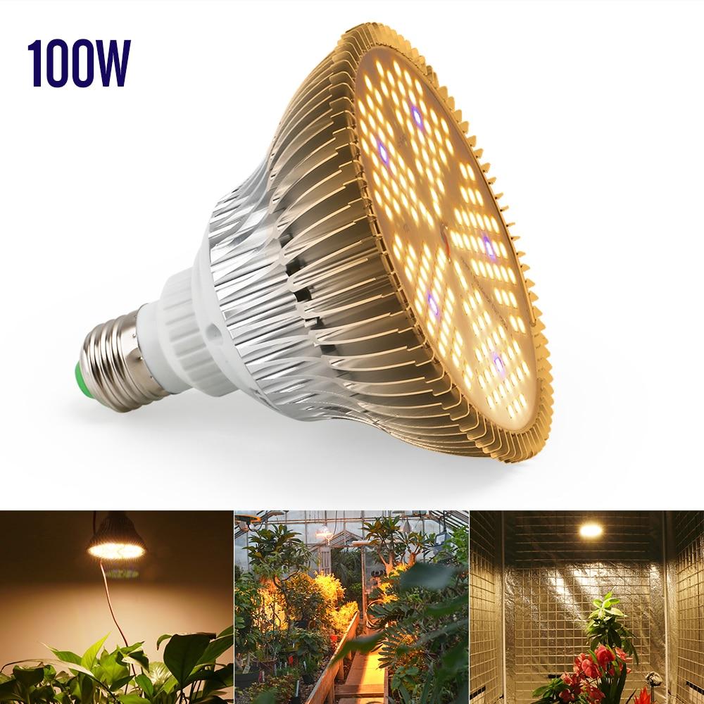 XRYL 10pcs CN RU DE US UK AU 100W E27 Warm Led Grow Indoor Garden Plants Hydroponics Flower Growing Light For Greenhouse Tents enlarge
